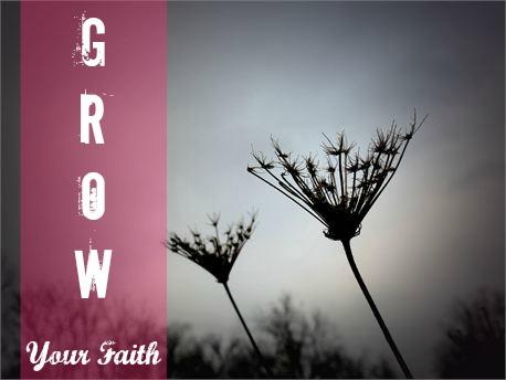 Grow_Your_Faith_Missindeedy