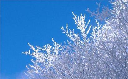 Snowy_Roads